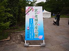 P5034199